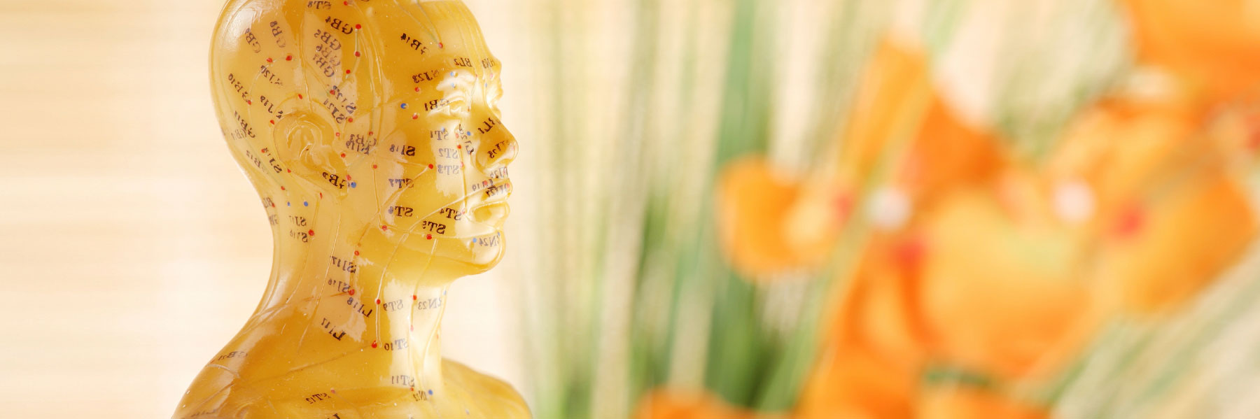 How Acupuncture Can Help You